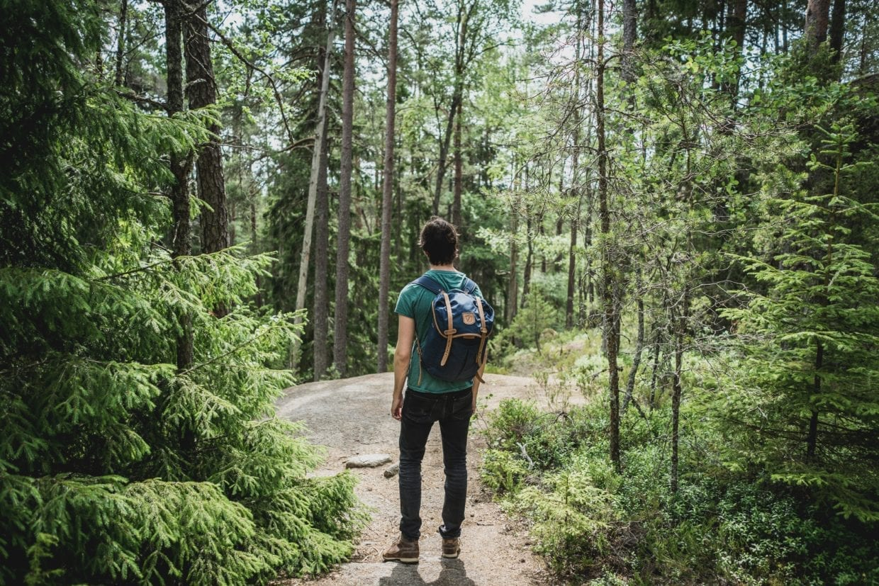 Hiking in the British Columbia Forest