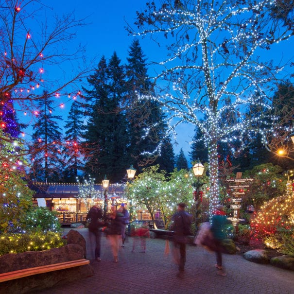 Vancouver Holiday Lights - Vancouver